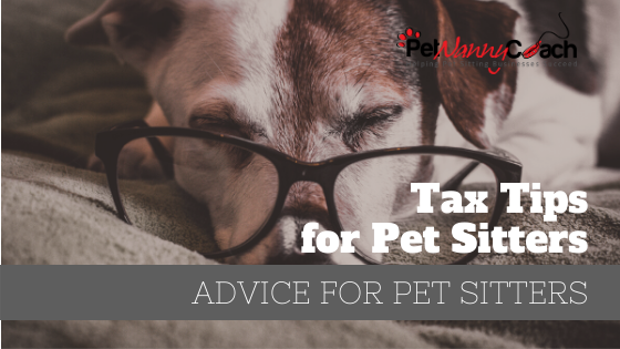 Tax Tips for Pet Sitters