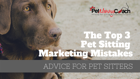 The Top 3 Pet Sitting Marketing Mistakes