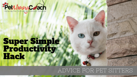 Productivity Hack for your pet sitting business