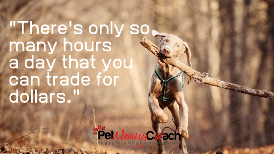 Work Smarter Not Harder In Your Pet Sitting Business