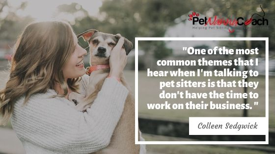 pet sitting safety tips quote