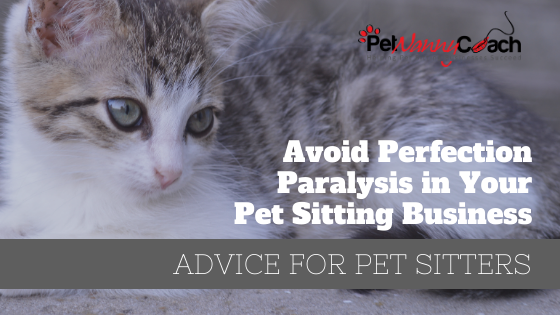 TITLE - Avoid Perfection Paralysis in Your Pet Sitting Business