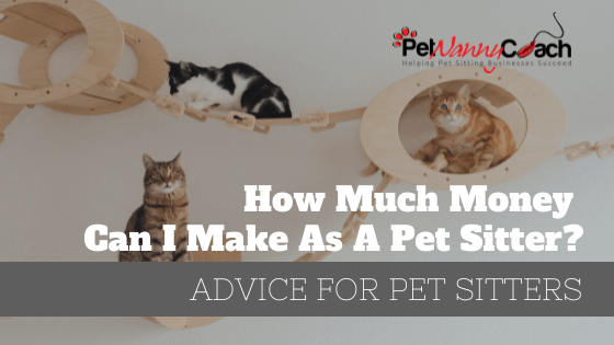 How Much Money Can I Make As A Pet Sitter