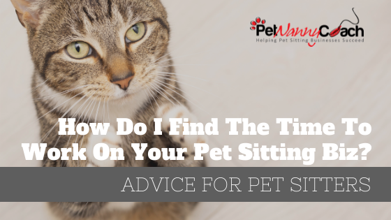 TITLE - How Do I Find The Time To Work On My Pet Sitting Biz-ver 02