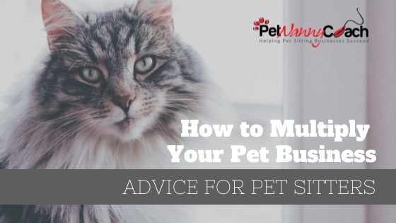 How to Multiply Your Pet Business