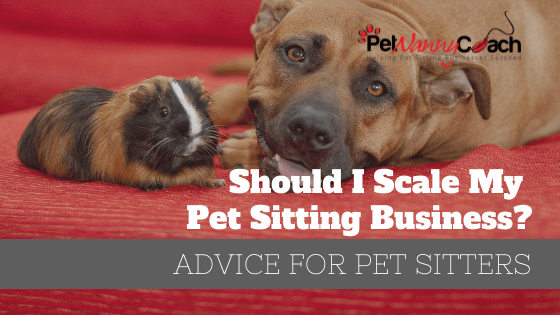 Should I Scale My Pet Sitting Business